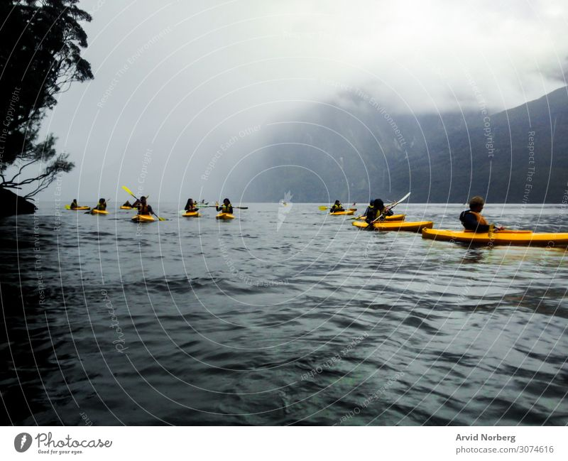 Several young people in yellow kayaks in Milford sound, New Zealand during a misty day action active activity adventure beautiful boat fun grey kayakers