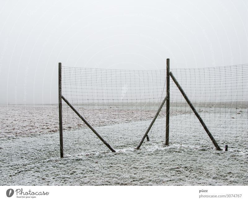 fence Environment Nature Landscape Earth Sky Winter Bad weather Fog Ice Frost Snow Field Wood Cold White Sadness Loneliness Apocalyptic sentiment Far-off places