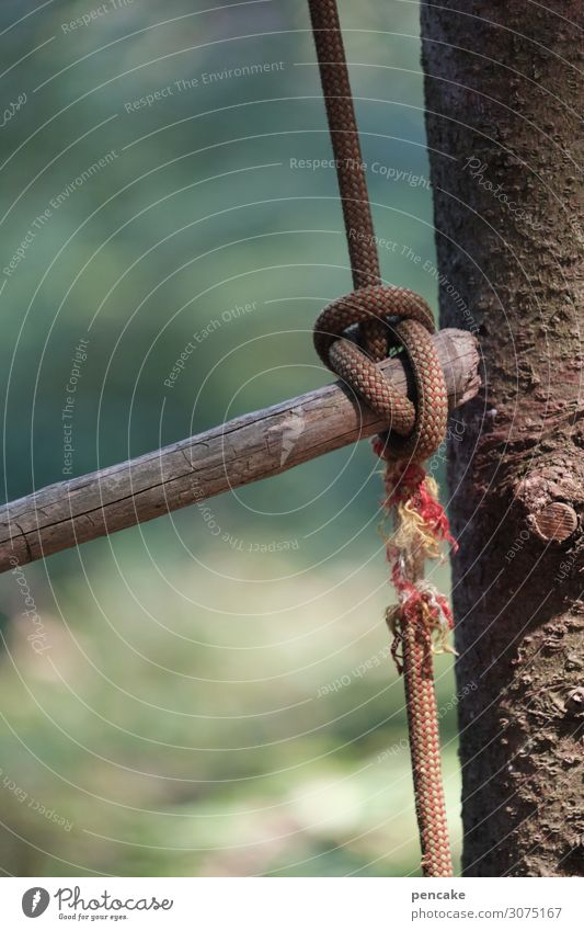 At the silk thread Environment Nature Tree Garden Park Forest Sign Authentic Fat Thin Broken Rope String Climbing rope Knot Silken Dangerous Abrupt Rip To fall