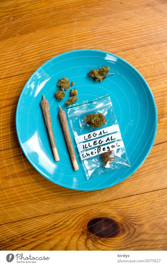 Stoner's best Plate Lifestyle Alternative medicine Smoking Intoxicant Relaxation Joint Cannabis Wood Esthetic Authentic Friendliness Rebellious Blue Yellow