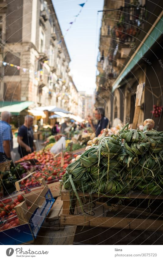 market stall Food Vegetable Fruit Nutrition Human being Masculine Life 3 Catania Italy Town House (Residential Structure) Building Shopping Curiosity