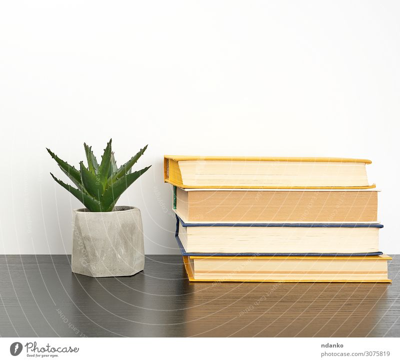 stack books on a black table and a ceramic pot Plant Green White Flower Black Wood Yellow Business School Retro Table Study Book Paper Academic studies Reading