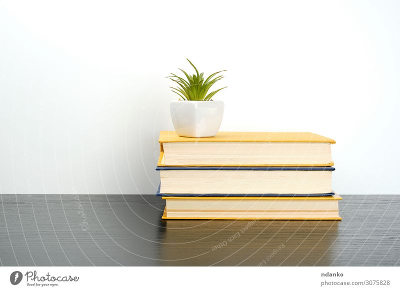 stack books on a black table, on top a ceramic pot Pot Reading Table Science & Research School Study Classroom Academic studies Business Book Library Plant