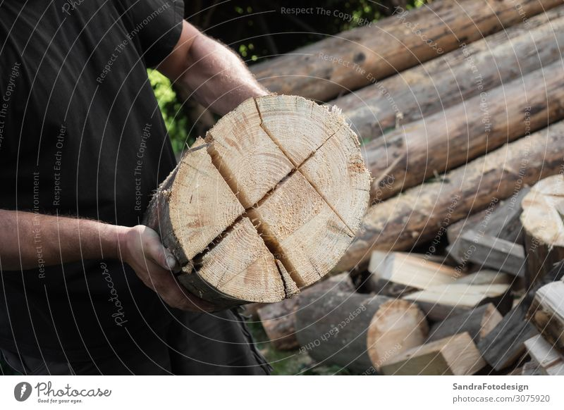 Firewood split with wooden splitter 1 Human being Nature Tree Wood Work and employment Strong Power Splinter splitting Split machine steel timber work bark