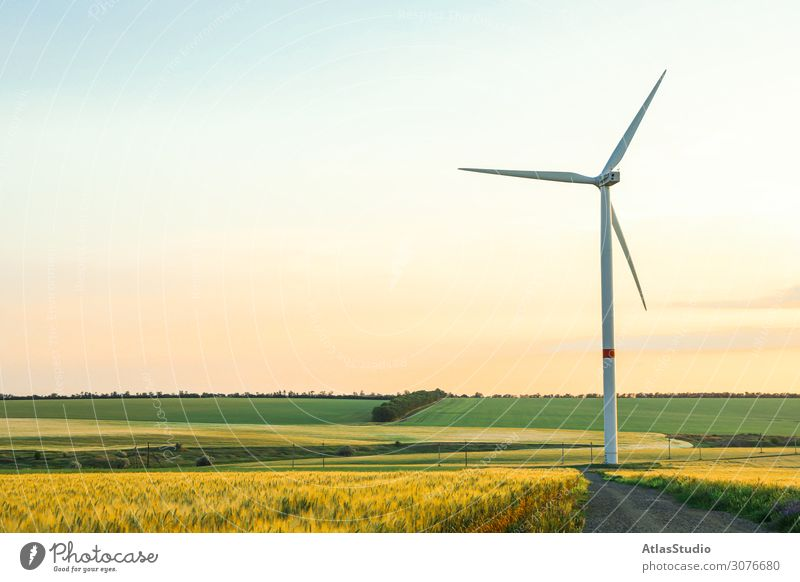 Wind turbine and beautiful fields at sunset, space for text mill wind alternative nature ecology meadow panorama renewable agriculture morning plant technology