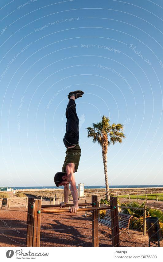 Handstand on the beach Acrobatics Gymnastics Sports Force Athletic Fitness Cool (slang) Sportsperson Balance Movement Cloudless sky Palm tree ingots Beach fun