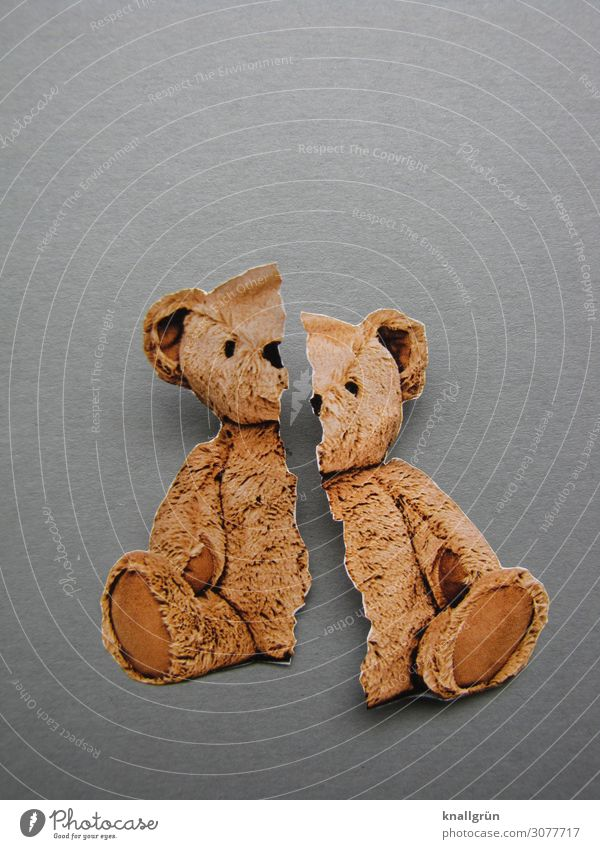 Broken Childhood Teddy bear Sit Brown Gray Emotions Moody Sadness Pain Longing Disappointment Fear Distress Infancy Survive Destruction Cuddly toy Toys