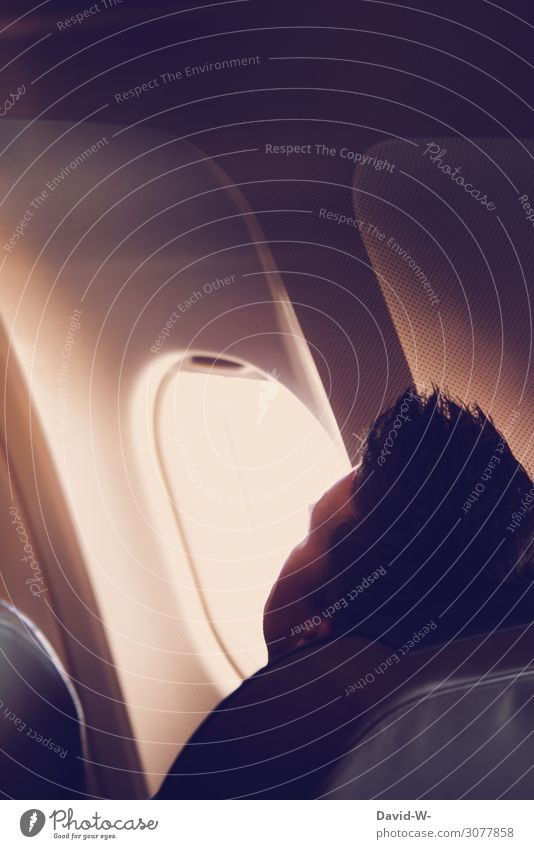 Human being Vacation & Travel Man Relaxation Calm Far-off places Adults Life Happy Airplane window Style Tourism Freedom Head Trip Design