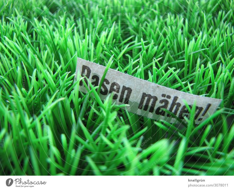 Mow the lawn! Characters Signs and labeling Communicate Natural Green Black White Determination Orderliness Nature Arrangement Town Growth Gardening Meadow Lawn