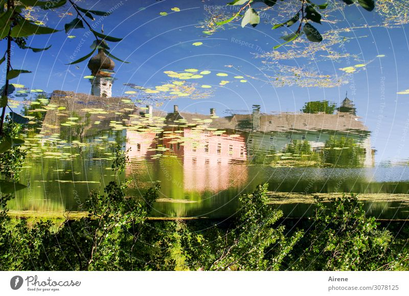 mirror-inverted Landscape Water Cloudless sky Beautiful weather Pond Lake Water lily pond Bavaria Village Church Tower Monastery Onion tower Fantastic Blue