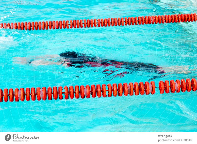 emergence Sports Fitness Sports Training Aquatics Sportsperson Sporting event Triathlon Swimming pool Human being Masculine Young man Youth (Young adults) Man