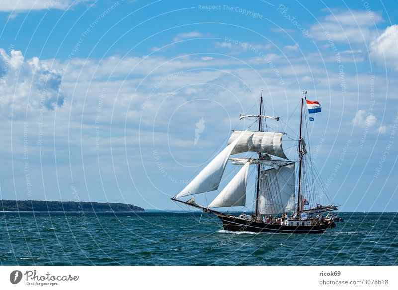Sailing ships on the Hanse Sail in Rostock Relaxation Vacation & Travel Tourism Summer Ocean Fairs & Carnivals Water Clouds Coast Baltic Sea Tourist Attraction
