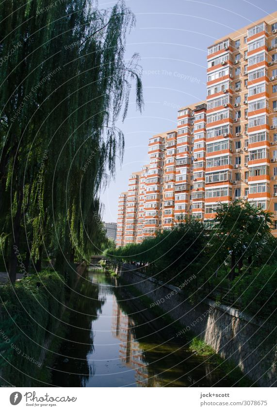 Better living in Beijing City trip Animal Cloudless sky Beautiful weather Channel Downtown High-rise Architecture Town house (City: Block of flats)