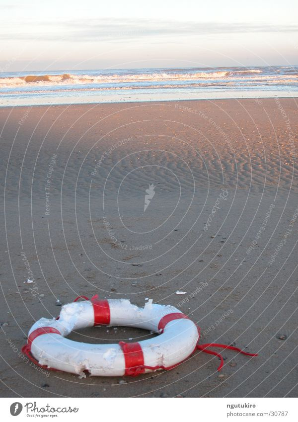 flotsam and jetsam Flotsam and jetsam Water wings Life belt Ocean Beach Trash