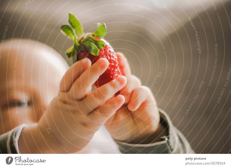 Baby holding strawberry up in his hand Lifestyle Joy Happy Body Skin Child Infancy Hand Fingers 0 - 12 months Environment Nature Spring Summer Climate change