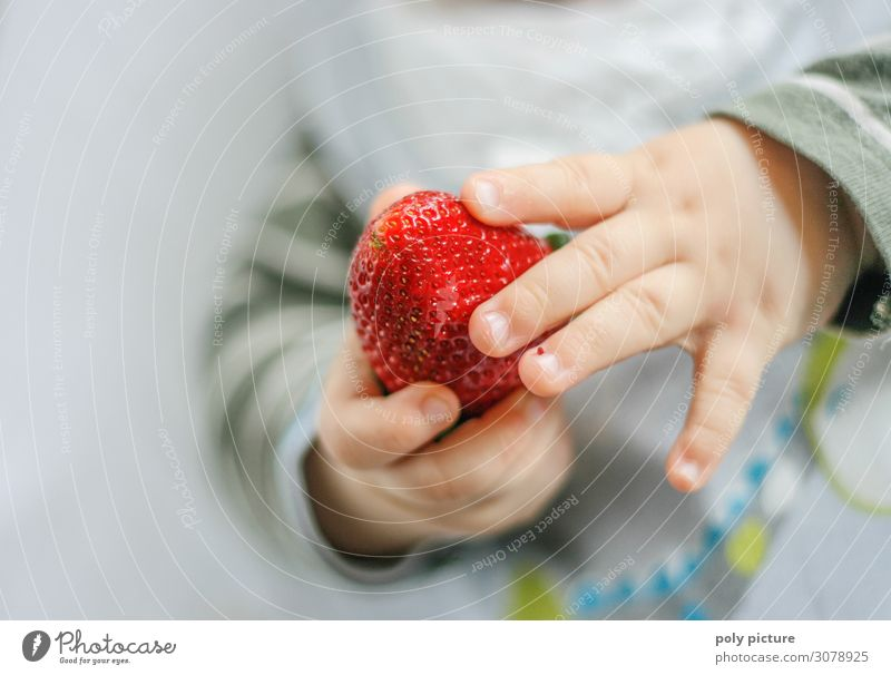 Baby holds strawberry - Detail Lifestyle Healthy Healthy Eating Well-being Contentment Summer Summer vacation Child Infancy Youth (Young adults) Hand Fingers