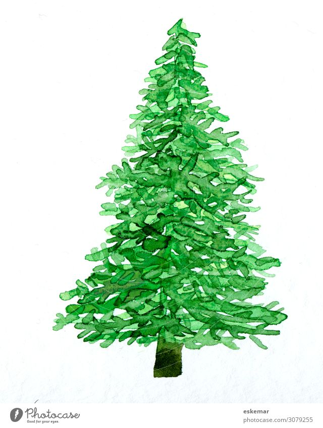 Christmas & Advent Plant Green White Tree Art Esthetic Creativity Painting and drawing (object) Christmas tree Painted Fir tree Work of art Watercolors