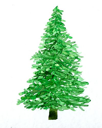 Christmas Tree Watercolor Christmas & Advent Christmas tree Art Work of art Painting and drawing (object) Watercolors Painted Plant Fir tree Esthetic Green