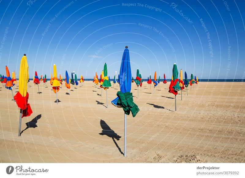 At the beach of Deauville Vacation & Travel Tourism Trip Adventure Far-off places Freedom City trip Hiking Summer Beautiful weather Waves Coast Beach Old