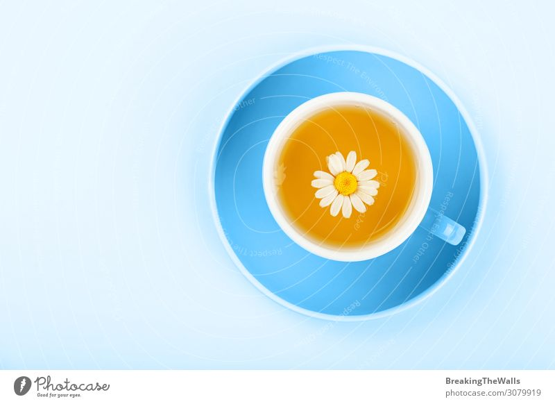 Blue cup of herbal tea with camomile Beverage Hot drink Tea Mug Flower Paper Natural Above Yellow Colour oolong Saucer Chamomile background elevated Top clear