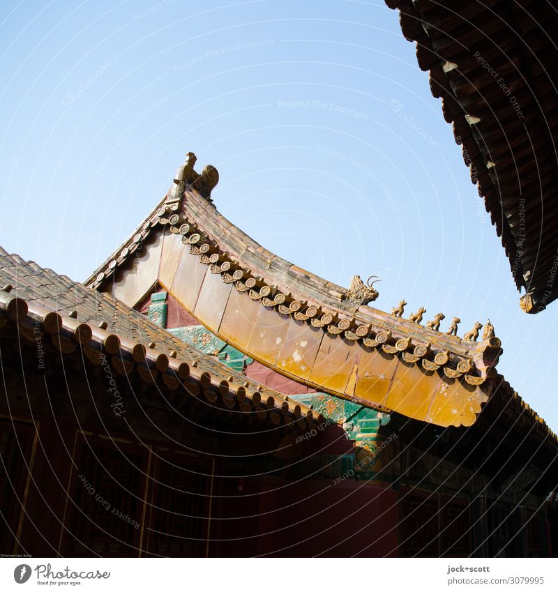 Dragons and Lions Far-off places Work of art Architecture World heritage Arts and crafts  Cinese architecture Cloudless sky Palace Pagodal roof
