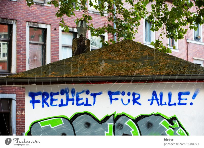 freedom Tree Branch Town House (Residential Structure) Facade Roof Sign Characters Graffiti Authentic Positive Rebellious Blue Green Red White Emotions