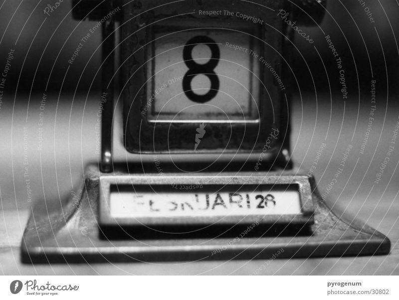 Calendar Black White 8 Month Depth of field Digits and numbers Perspective Level