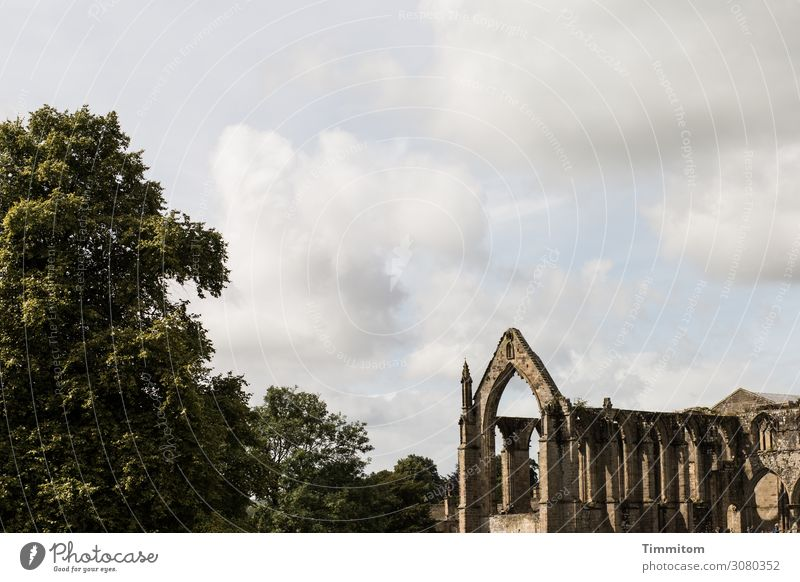 Bolton Abbey Vacation & Travel Environment Sky Beautiful weather Tree Great Britain Church Ruin Wall (barrier) Wall (building) Tourist Attraction Stone Old