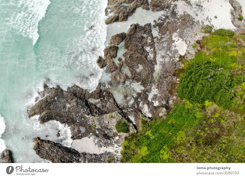 wild coast Coast Waves Ocean New Zealand Wild Wilderness Aerial photograph droning Rock vegetation items Surf Water Nature White crest Elements Abstract