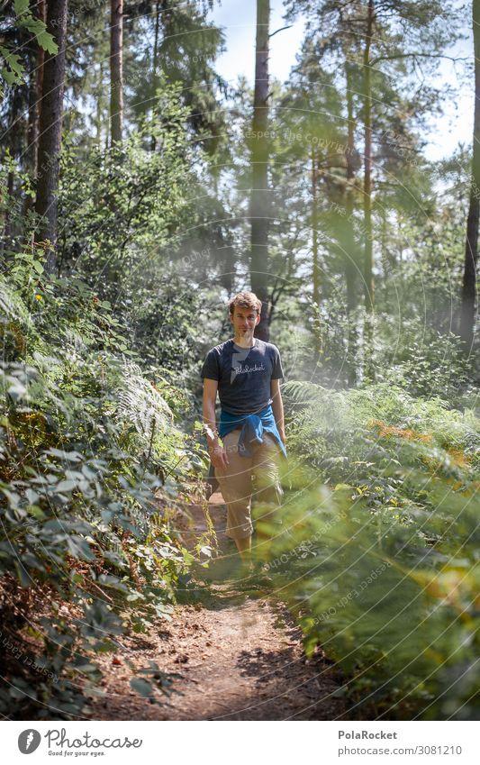 #A2# Nature Boy Environment Landscape Plant Tree Esthetic Hiking Exterior shot Forest Saxony Saxon Switzerland Man Walking Lanes & trails Colour photo