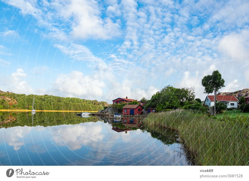 Reflection in the water in Nösund on the island of Orust in Sweden Relaxation Vacation & Travel Tourism Summer Ocean House (Residential Structure) Nature