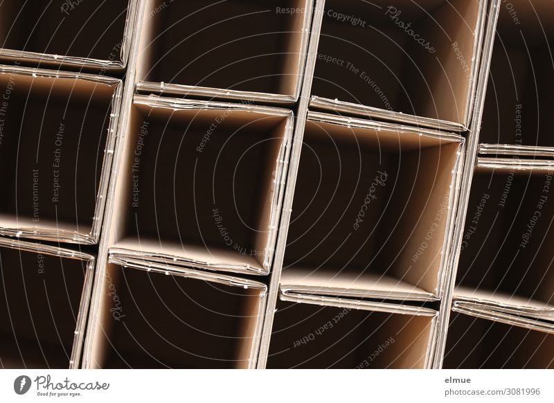 Empty Cardboard folding carton Network Square Sharp-edged Thrifty Curiosity Surprise Avaricious Business Design Inspiration Shopping Testing & Control