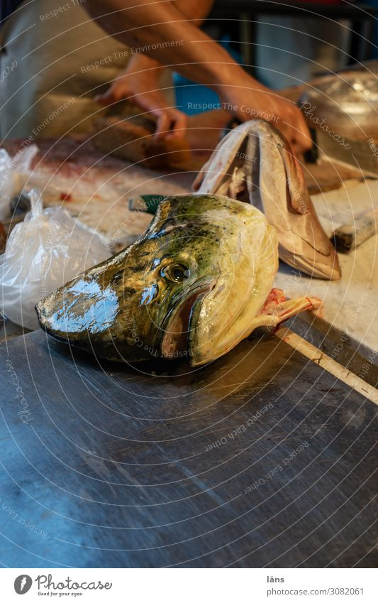 Human being Food Nutrition Island Shopping Italy Fish Sicily Sell Offer Fish market