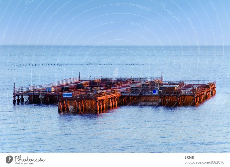 Mussel Farm Ocean Industry Environment Nature Horizon Lake Maritime Black Sea construction Ecological ecosystem mussel farm no person water water area