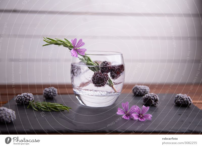 gin and tonic Fruit Beverage Alcoholic drinks Luxury Elegant Summer Feasts & Celebrations Green Pink Red Black White Gin Blackberry isolated Cocktail glass ice