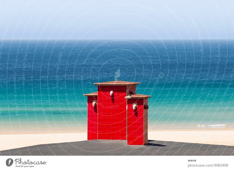 red roof chimneys in front of a deep blue sea Vacation & Travel Beach Ocean Nature Swimming & Bathing copy space flowers landscape nobody scenery tree water