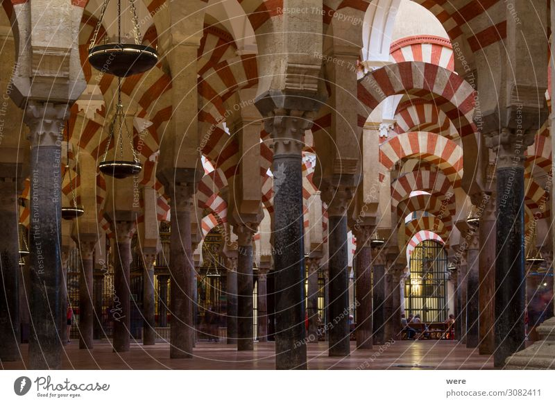 Columns in the World Heritage Mezquita in Cordoba Church Dome Palace Castle Religion and faith Andalusia columns holiday Moshe spain arabesque building