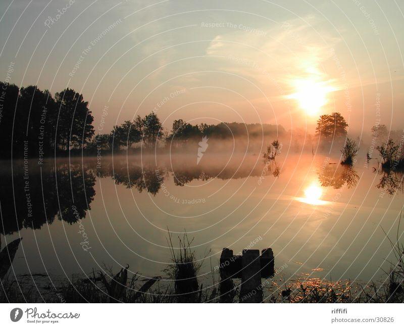 Sun Calm Clouds Lake Fog Dawn Sunrise