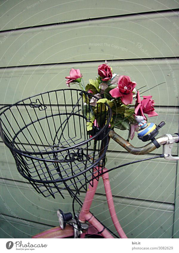 Pink bicycle with flowers and basket, on a wooden wall. Wall (barrier) Wall (building) Transport Means of transport Cycling Street Joy Happy Happiness