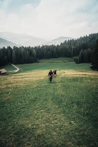 Woman Human being Sky Nature Man Summer Landscape Clouds Animal Forest Mountain Adults Spring Sports Movement Couple