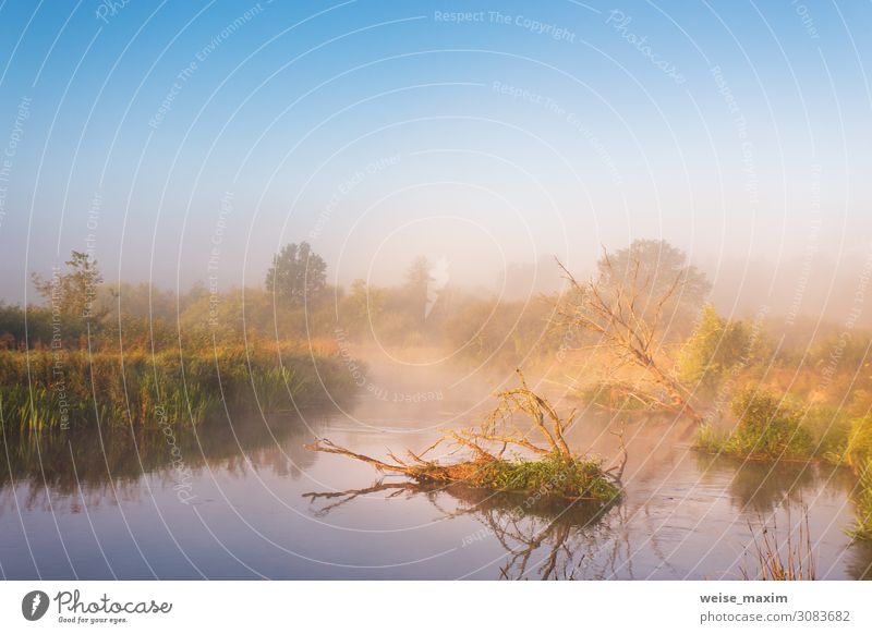 Autumn foggy rural sunrise. Sunny morning on river Vacation & Travel Tourism Trip Adventure Summer Environment Nature Landscape Plant Sky Clouds Sunrise Sunset