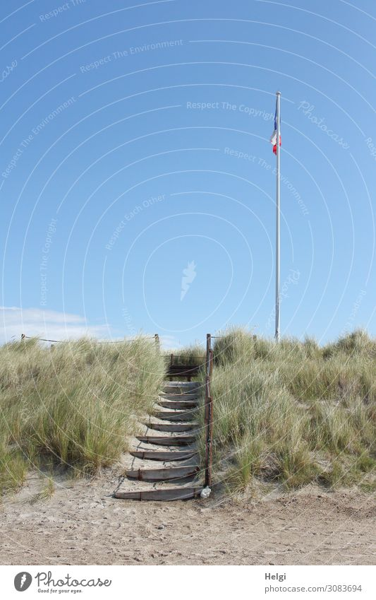 a wooden staircase with railing leads from the sandy beach to a dune with dune grass and flagpole Environment Nature Landscape Plant Sand Sky Summer
