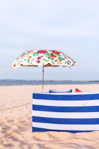 beach protection Vacation & Travel Tourism Trip Beach Ocean Baltic Sea Island Usedom Curiosity Relaxation Sunshade Striped Floral wind deflector Private sphere