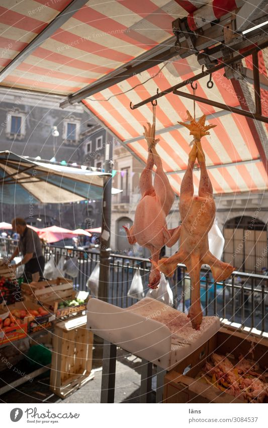 upside down Market stall Poultry Plucked Italy Catania Head first