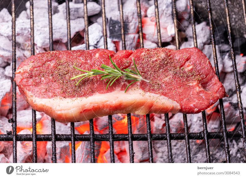 Steak on the grill Meat Nature Warmth Barbecue (apparatus) Wood Rust Hot Red Black beef steak Beef Rosemary Charcoal Fireplace Flame BBQ Grill Coal Burn Glow