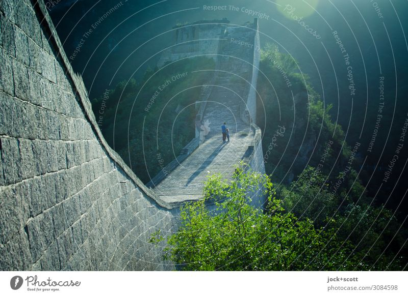 zàijiàn! Goodbye on the great wall Far-off places Architecture World heritage Beautiful weather Warmth tree Mountain Beijing Manmade structures Wall (barrier)