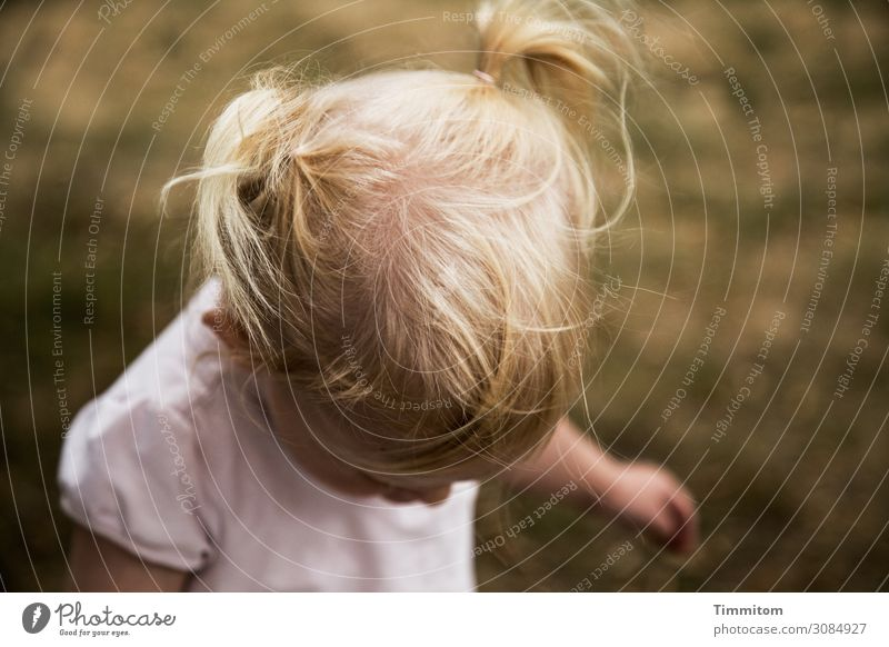 valuable | man and nature (2) Human being Toddler Head Hair and hairstyles 1 Environment Nature Grass Meadow Movement Happiness Healthy Natural Emotions Joy