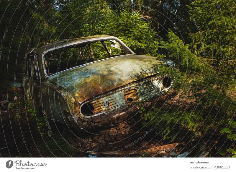 Vacation & Travel Nature Old Loneliness Forest Environment Sadness Dirty Transience Broken Historic Discover Mysterious Rust Nostalgia Scandinavia