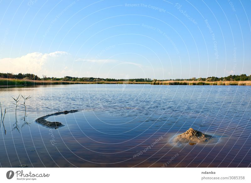 therapeutic lake with iodine and minerals Sky Vacation & Travel Nature Summer Plant Blue Green Landscape Sun Tree Leaf Forest Environment Natural Grass Tourism