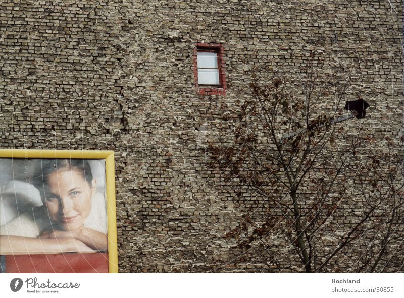 Woman Tree Berlin Wall (building) Window Architecture Advertising Brick Brick wall